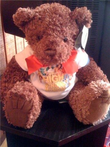 High School Musical 2 Teddy Bear - Tucker