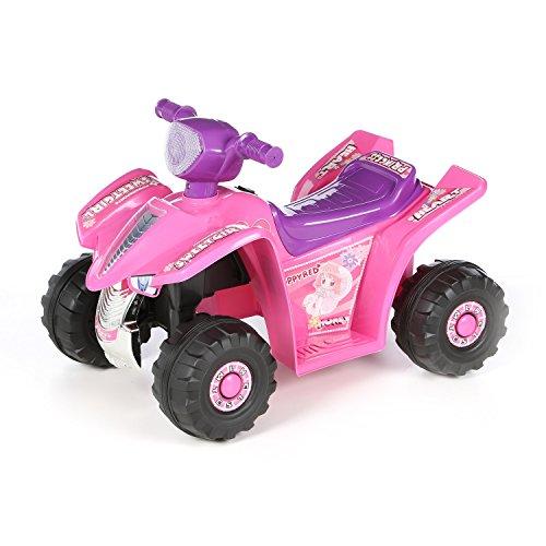 Lil Rider Princess 6v Battery Powered Atv Battery Powered Kids Car