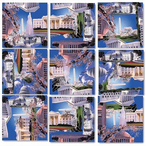 B Dazzle Washington DC Scramble Squares 9 Piece Puzzle