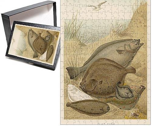 Photo Jigsaw Puzzle Of A Group Of Flat Fish