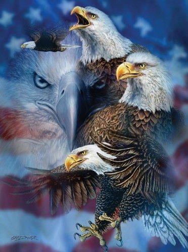 Patriotic Eagles a 1000-Piece Jigsaw Puzzle by Sunsout Inc