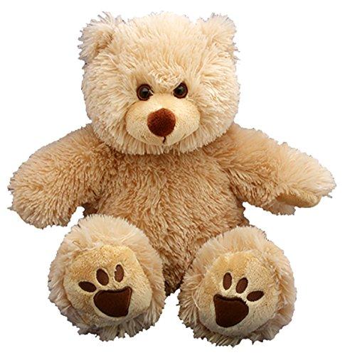 PERSONAL Recordable Plush 15 Talking Teddy Bear