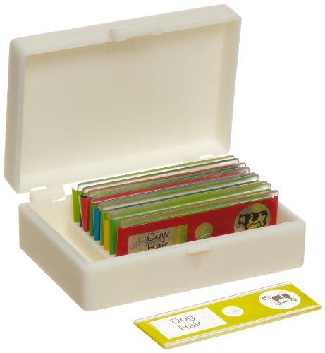 American Educational Plastic Animal Microscope Slide Set in Plastic Storage Box Bundle of 50