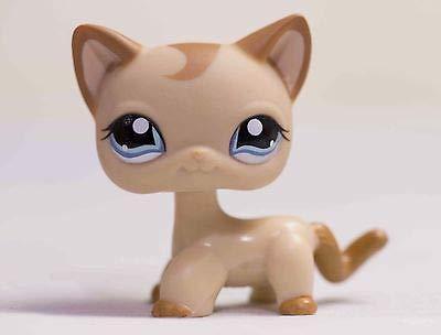 Lapps Pet Brown Short Hair Cat Kitty Blue Eyes Toy 1024