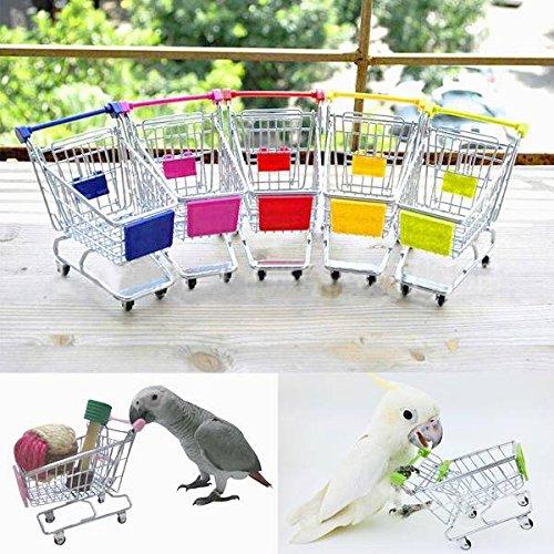 Pink Lizard Parrot Toy Bird Supermarket Shopping Cart Kids Growth Box