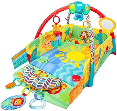 Bright Starts Sunny Safari Babys Play Place - 0-12 Months - First Adventures