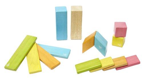 14 Piece Tegu Magnetic Wooden Block Set Tints