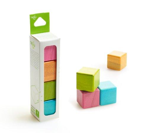 4 Piece Tegu Magnetic Wooden Block Cube Set Tints