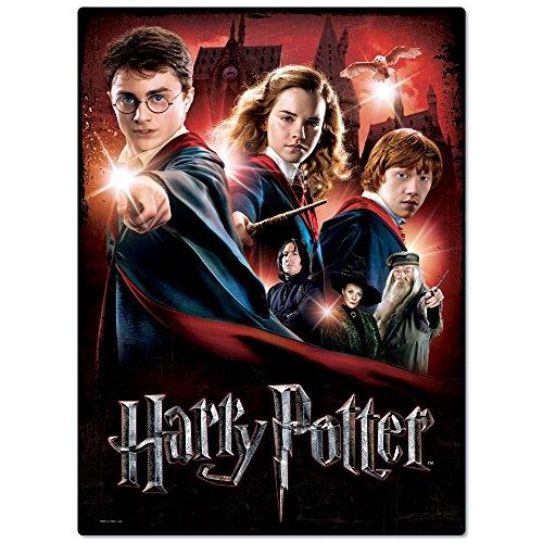 WREBBIT 3D Hogwarts School Poster Puzzle 500 Pieces