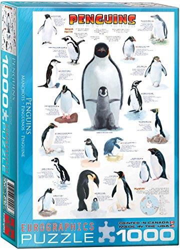 EuroGraphics Penguins Puzzle 1000-Piece