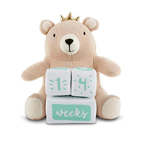 Baby Aspen My First Milestone Brown Bear Plush Plus Baby Age Blocks tanAquaWhite
