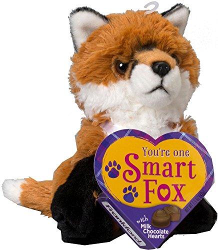 Smart Fox Animal Valentines Plush Toy with Milk Chocolate Hearts 7 Inch