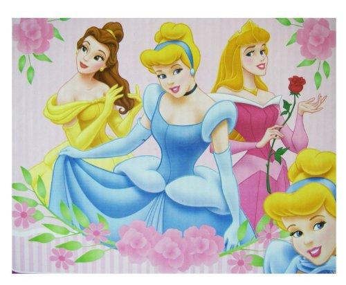 Disney Princess Blanket Fleece Throw Beautiful Dreamers