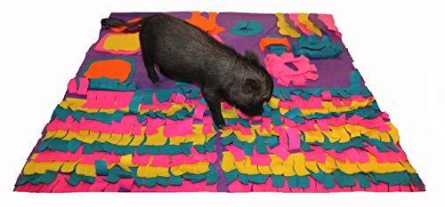 AZ Micro Mini Pigs Pig Activity Rooting Mat - 35 x 35