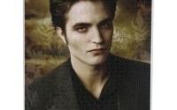 Twilight-New-Moon-Jigsaw-Puzzle-Edward-1-000-Pieces-by-NECA-9.jpg