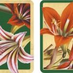 Entertaining-with-Caspari-Double-Deck-of-Bridge-Playing-Cards-with-Jumbo-Typeface-Amaryllis-Set-of-2-14.jpg