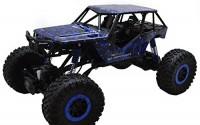 1-10-Scale-2-4Ghz-4-Wheel-Drive-Rock-Crawler-Radio-Remote-Control-Car-Blue-10.jpg